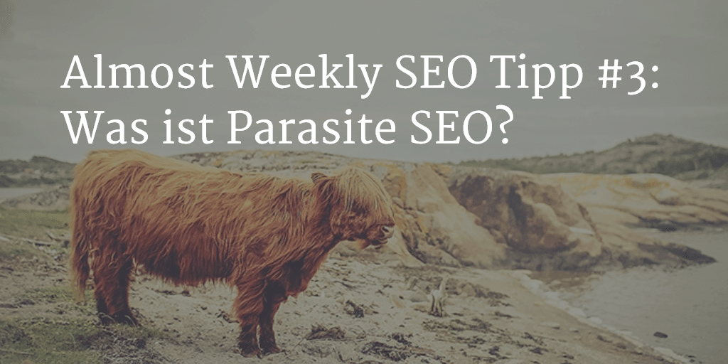 Was ist Parasite SEO?