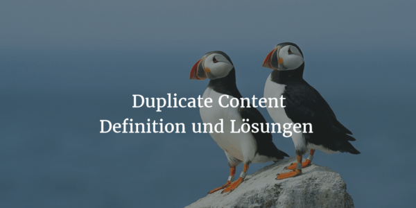 Duplicate Content – Lösungen zur Behebung von doppelten Inhalten
